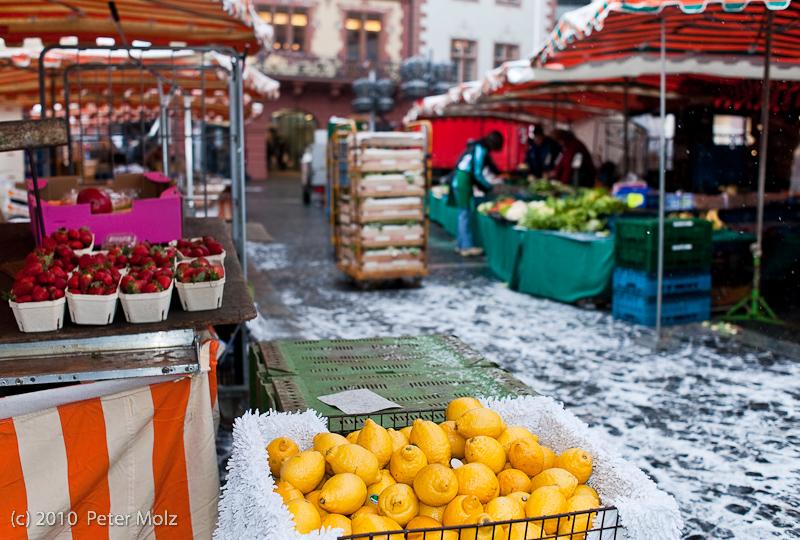 Der Markt ist gelaufen! / Mainz Januar 2010