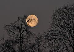 Der Mond.....