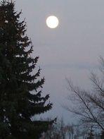 Der Mond - die Sonne der Nacht