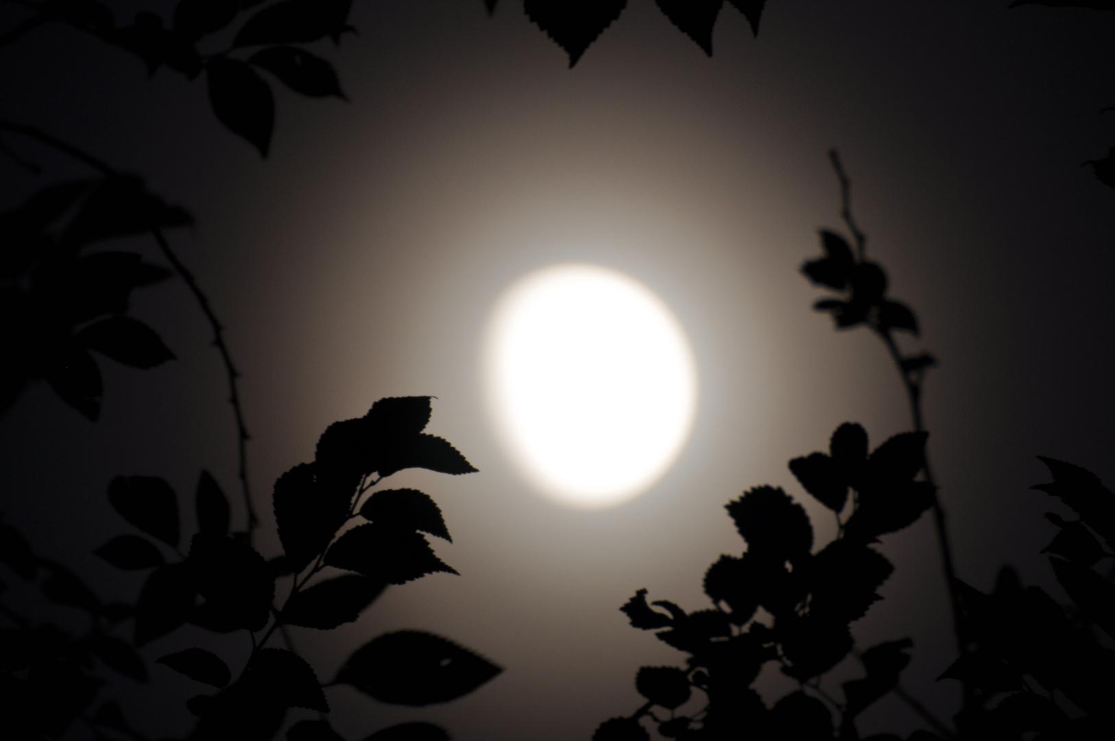 Der Mond hat Geheimnisse