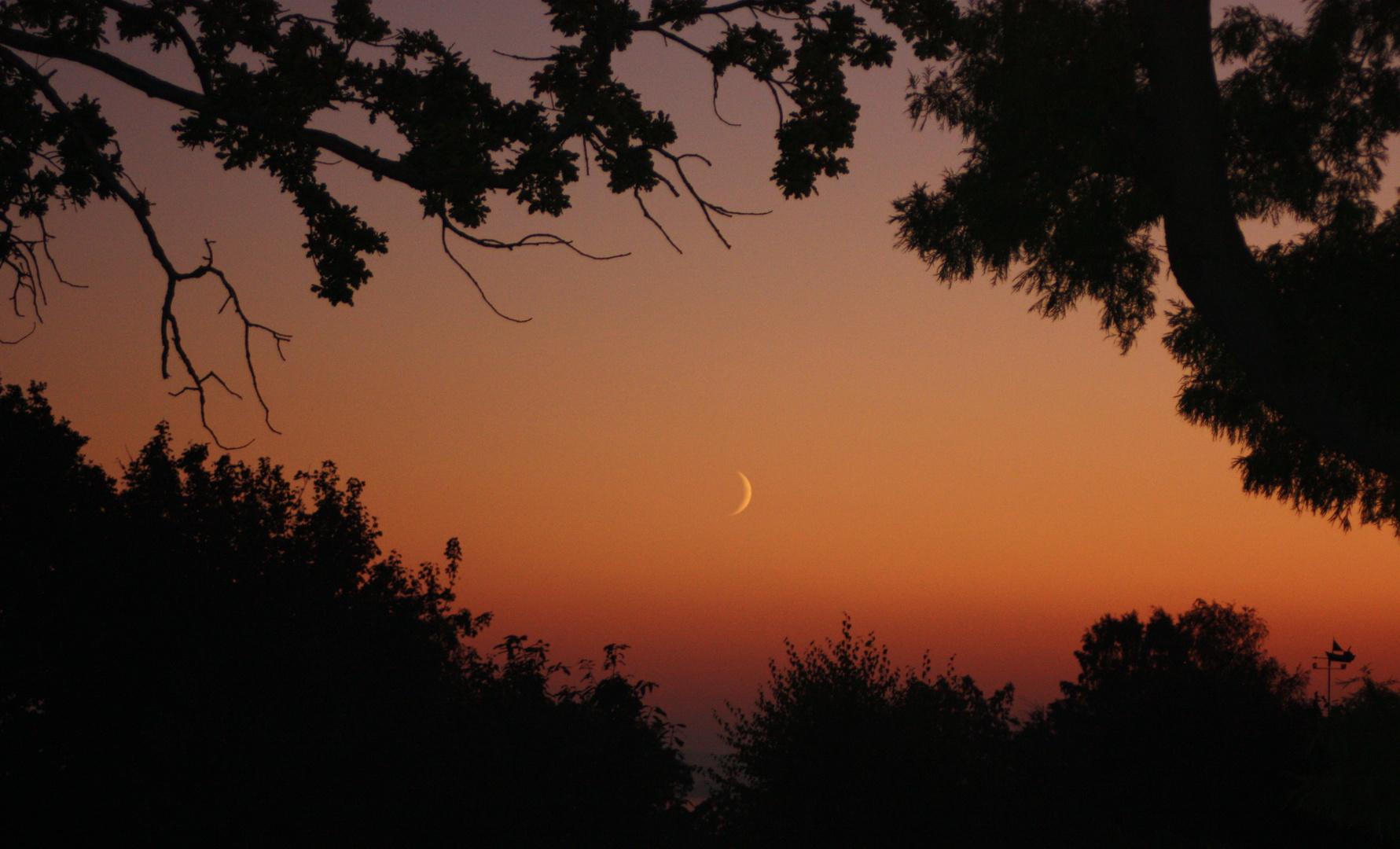 der Mond im Abendrot