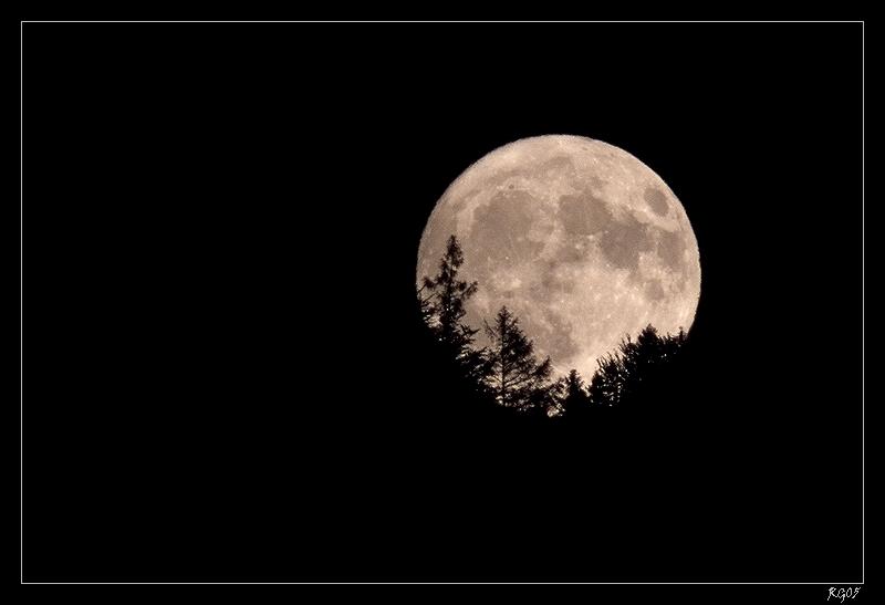 """""""Der Mond ist aufgegangen"""""""