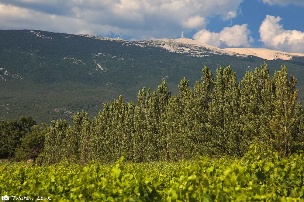 der Mont Ventoux - gesehen durch meinen Pol Filter