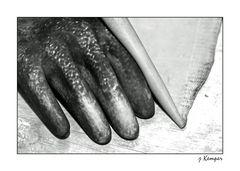 Der Moor-Handschuh