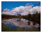 Der Moorsee