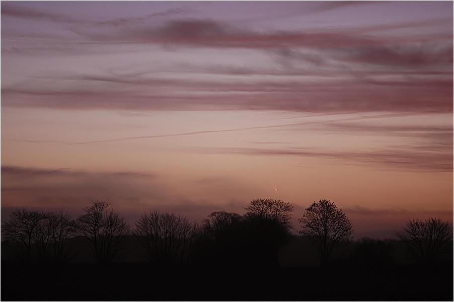 Der Morgen des Kometen (McNaught)