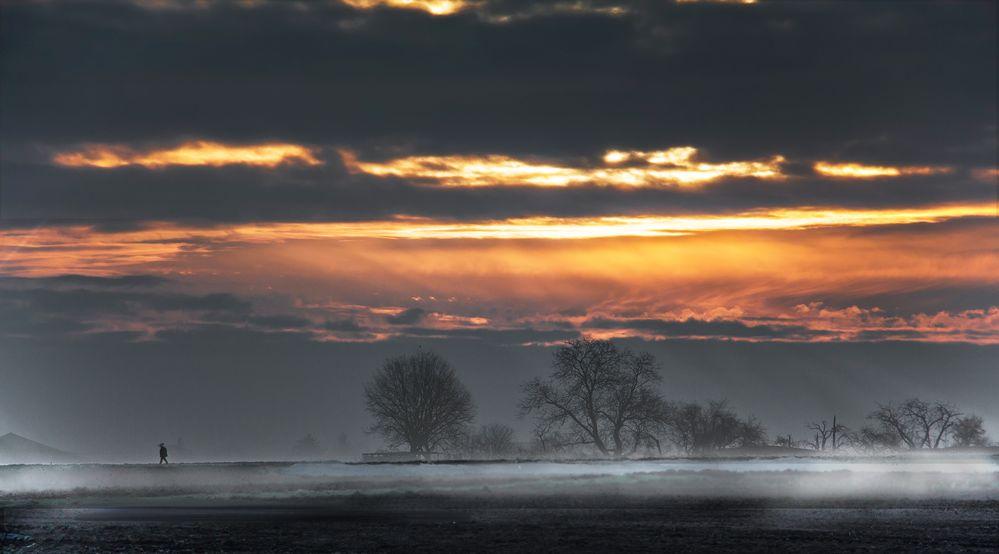 Der Morgenspatziergang