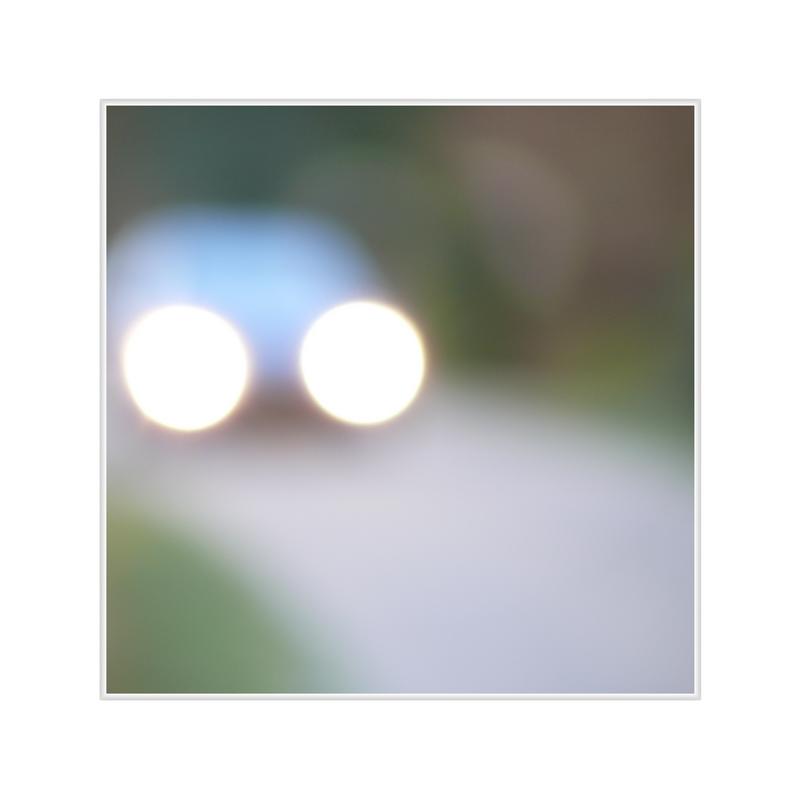 Der (motorisierte) Schimmelreiter auf dem (Oranje)dijk