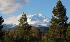Der Mt. Shasta....