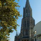 Der Münster von Ulm