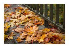 Der nasse Herbst