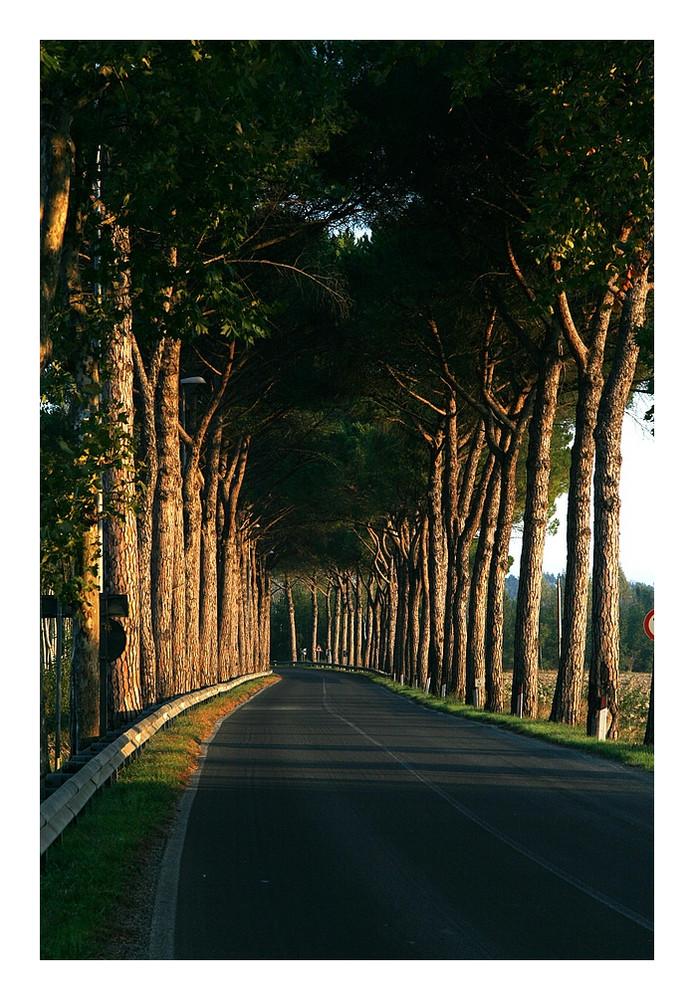 Der natürliche Tunnel