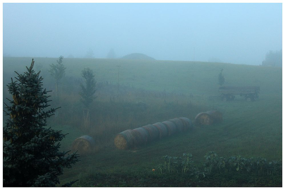 ... der Nebel der Gegenwart ...