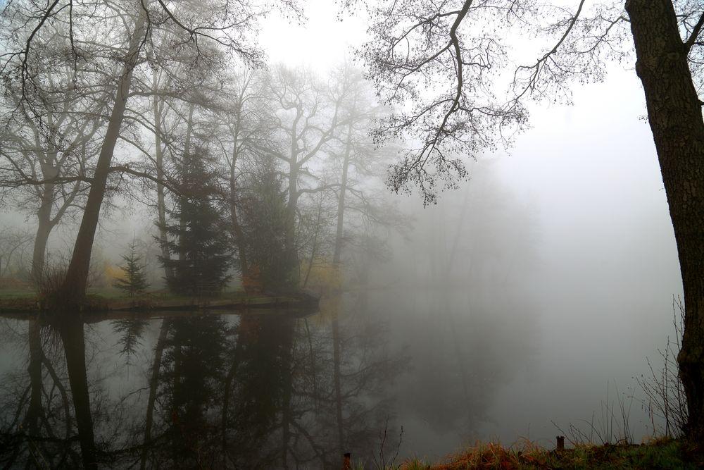 Der Nebel hat die Oberhand