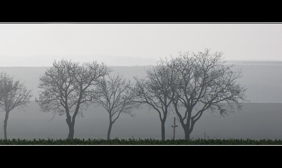 Der Nebel hebt sich auch hier