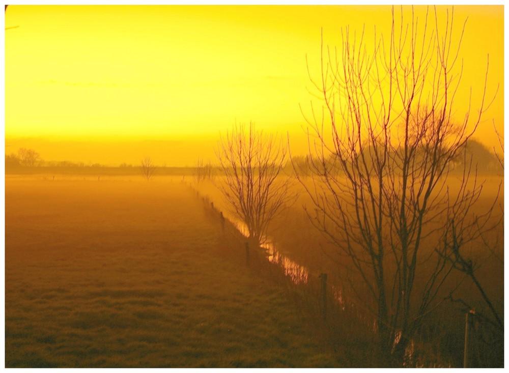 Der Nebel ist der Weichzeichner der Natur........