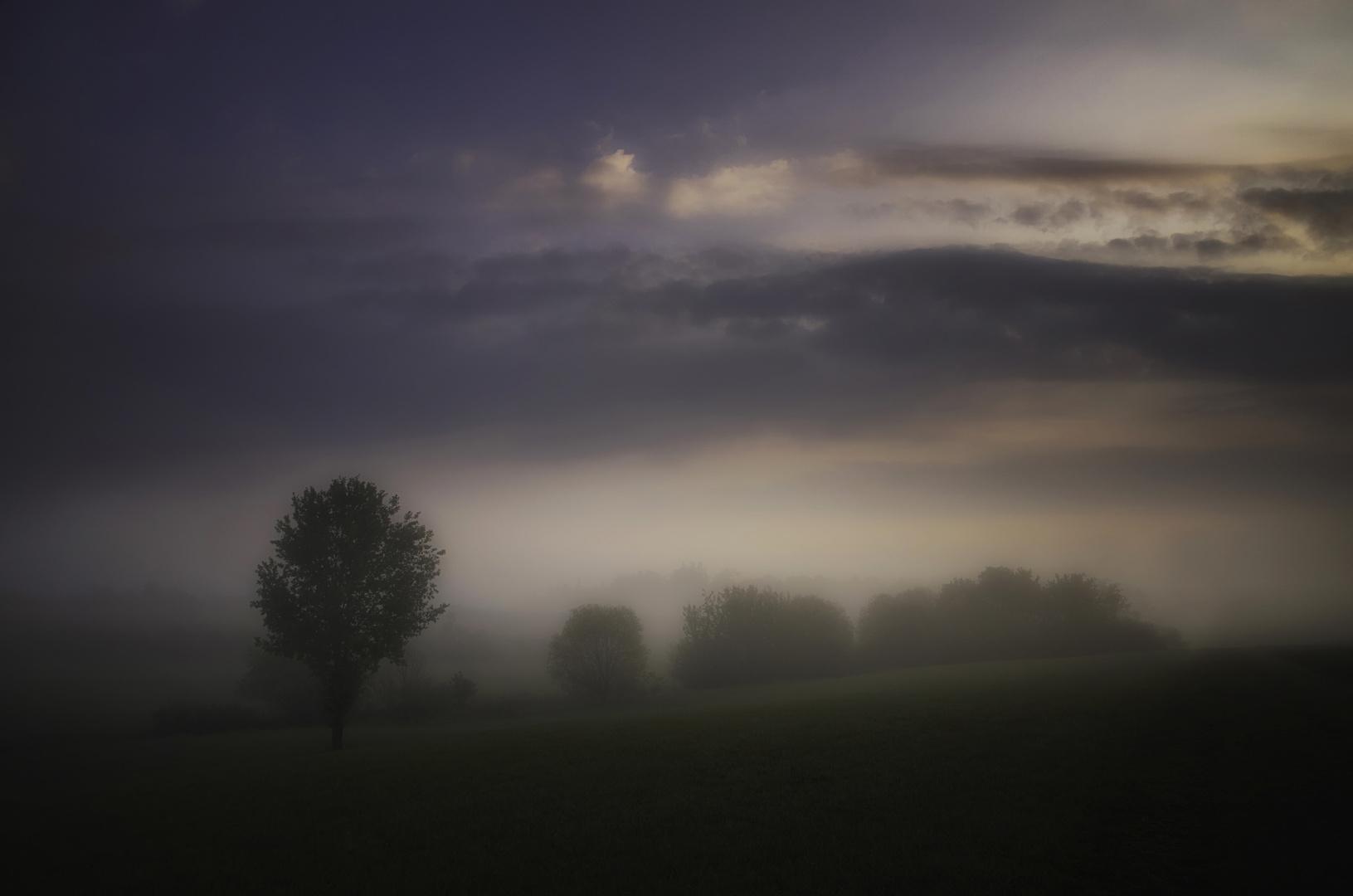 der Nebel lichtet sich