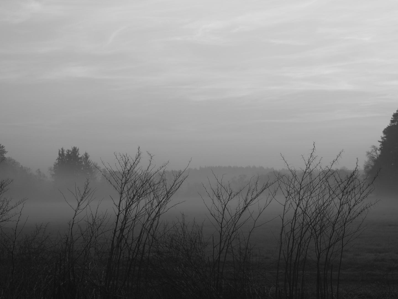 Der Nebel verfliegt...