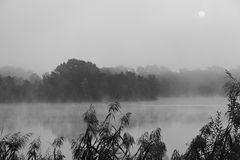 Der Nebel zieht...