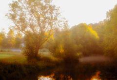 Der nebelige Morgen