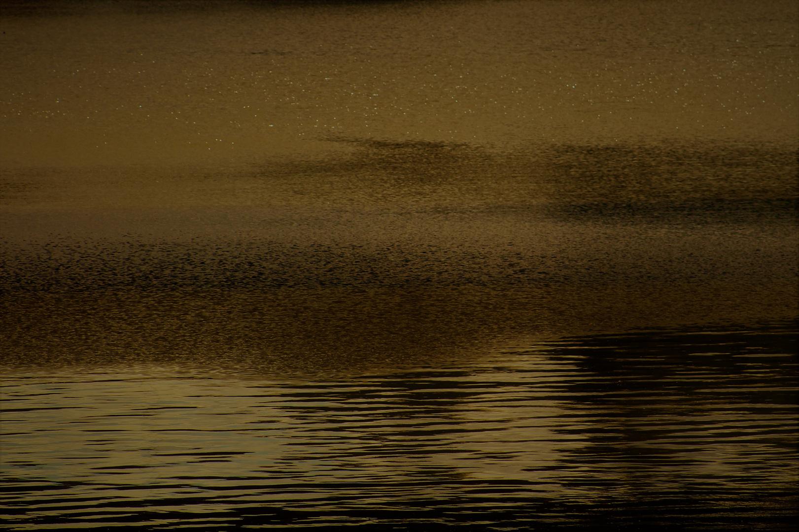 der Neckar in der Abendsonne