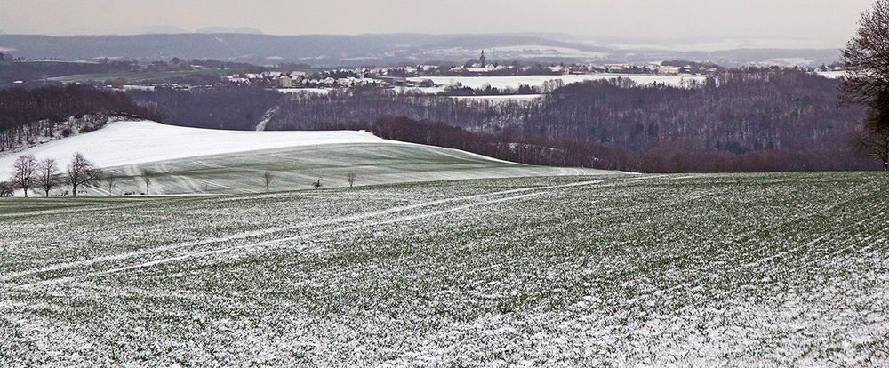 Der neue Schnee war gestern auf der Heimfahrt von Dresden gerade durchgezogen...