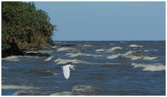 Der Nicaraguasee