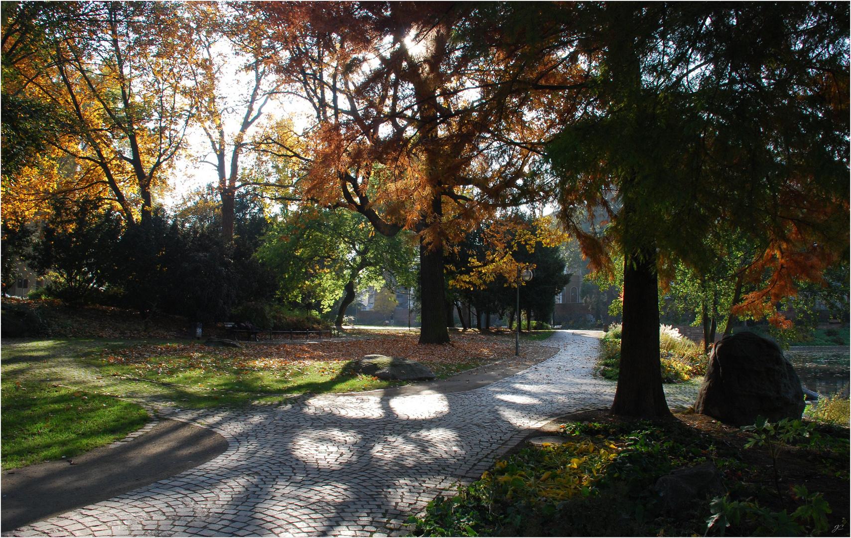 Der Park im Gegenlicht