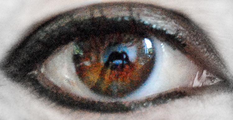 """""""Der Photograph, das Auge der Welt"""""""