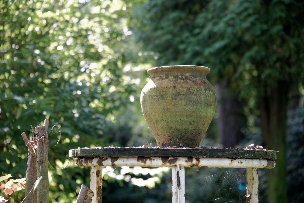 Der Pott in Karins Garten