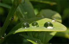 Der Regen hinterlässt seine Spuren...