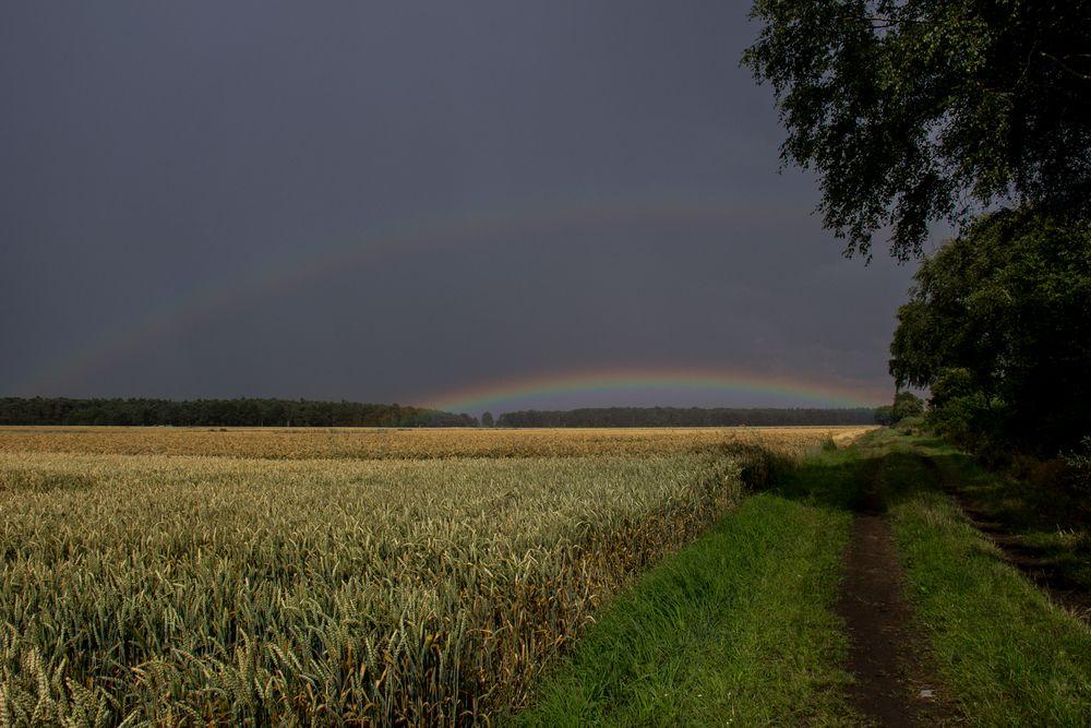 Der Regenbogen...