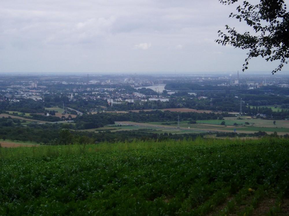 Der Rhein Bei Wiesbaden