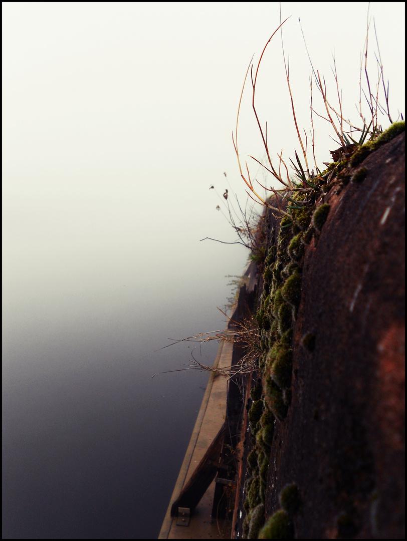Der Rhein, versteckt im Nebel.