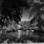Der Riedsee einmal in S/W