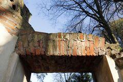 Der Römische Ruinenbogen im Luisium im Spätherbst - Bild 6
