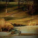 der Rosensteinpark im Winter