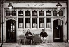 Der rote Löwe
