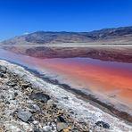 Der rote See