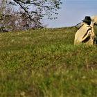 Der Schäfer mit Blick auf eines seiner Schafe