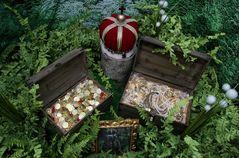 Der Schatz im Zauberwald