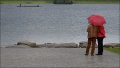 Der Schirm ...
