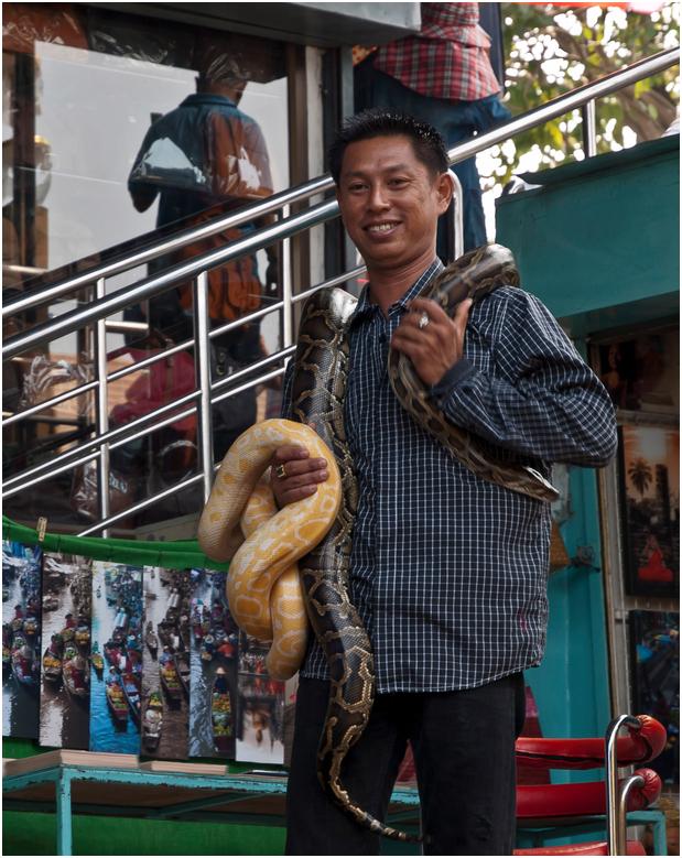 Der Schlangenmann