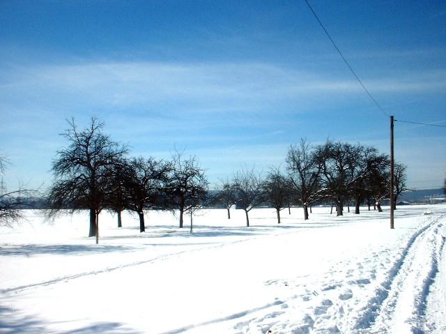 der schnee, der blended so schön2