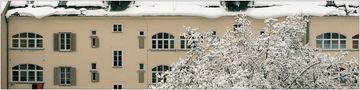 der Schnee von gestern von Holger Born