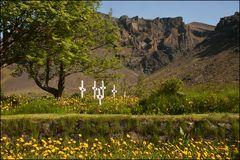 der schönste Friedhof
