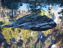 Der schwimmende Stein! - Cette pierre à l'air de nager… (* voir texte français)
