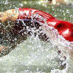 ... der Schwimmer ...