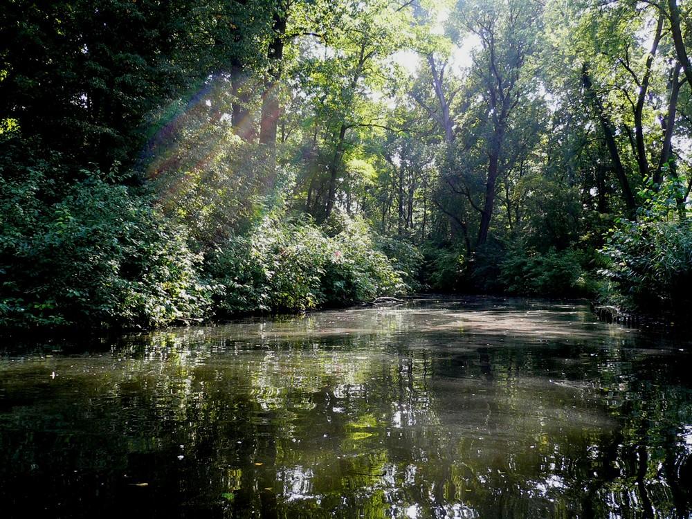 Der See, bei dem die Elfen wohnen... :-)
