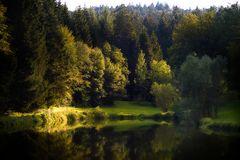 Der See im Wald